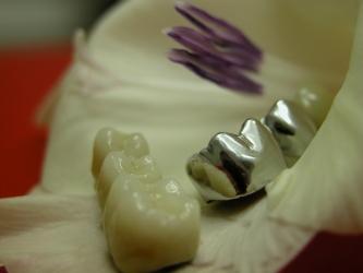 Zahnlabor Maresch Ostrau, Bild Nr. 18