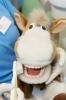 Zahnarzt Herr Dr. med. dent. Walter Ide, Bild Nr. 3